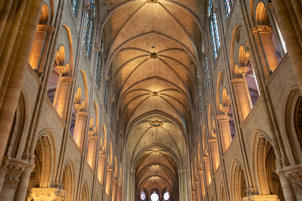 The World Mourns Notre Dame, Cathedral of Cathedrals