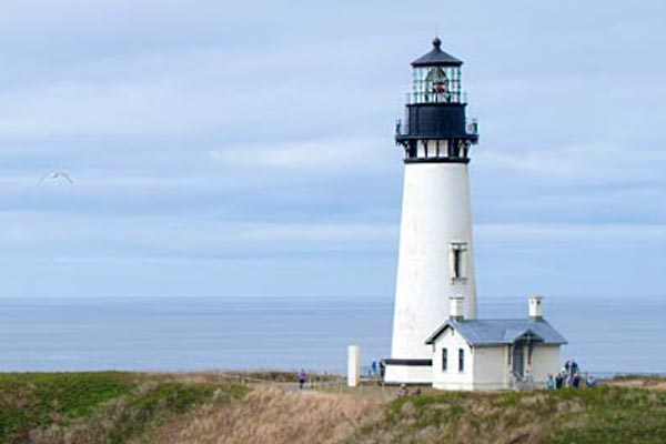 Lighthouse, Tide Pools and Seals