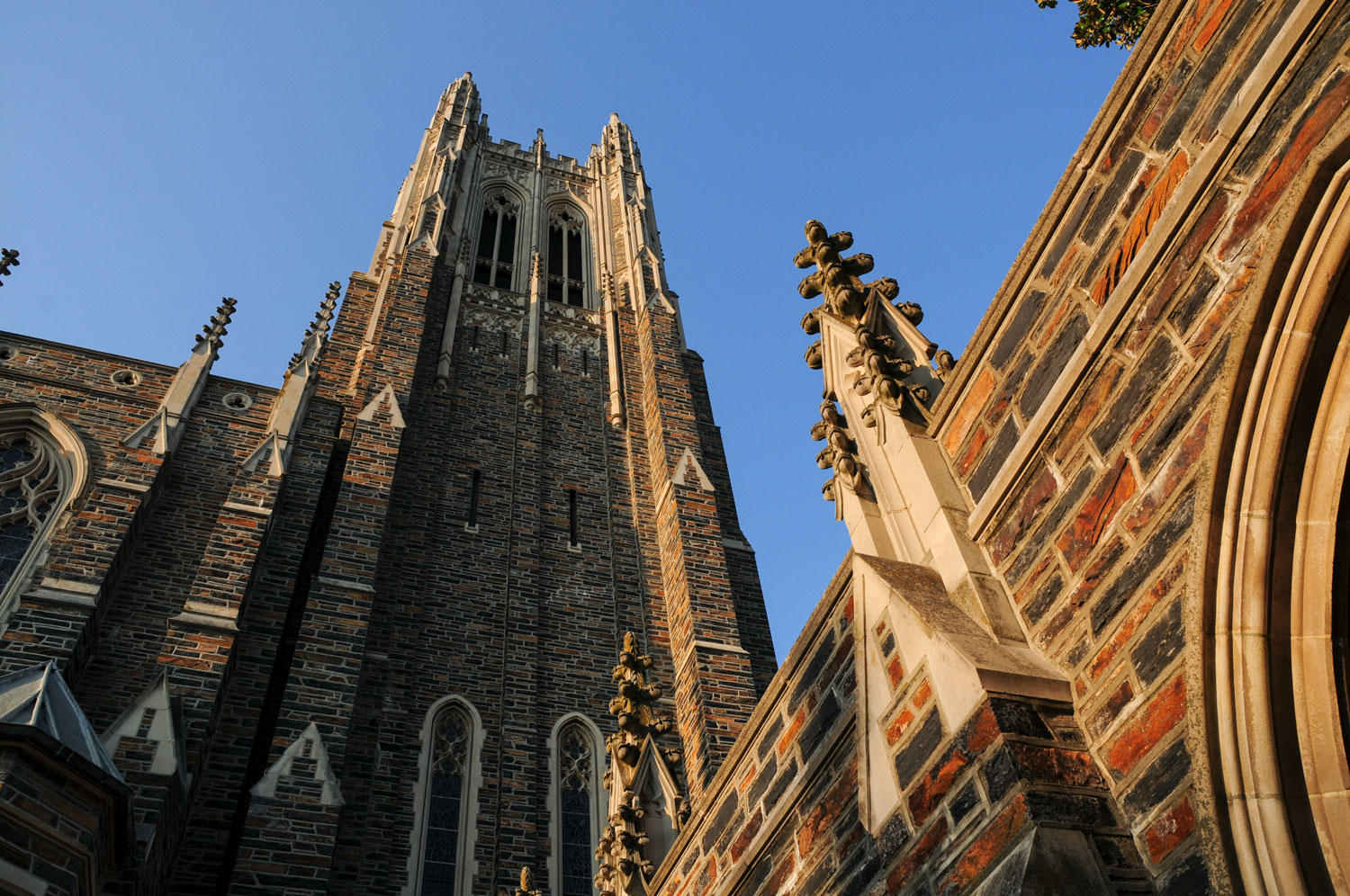 Duke's Beautiful Campus, Academic Excellence and Mixed Legacy