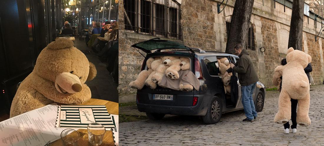 Teddy Bear Social Distancing