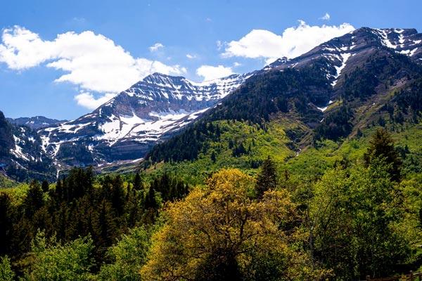 Springtime in the Rockies