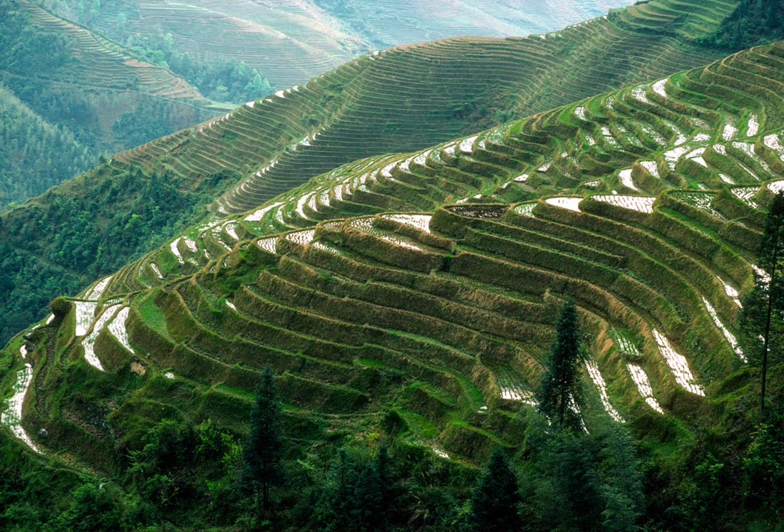 terraced-hills-guangxi-china